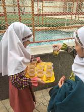 پروژه شناخت گياهان اهداف پروژه: ١:آشنايي بچه ها با گياهان خوراكي و غير خوراكي و  فوايدآن ها   و ایجاد  روحيه همكاري و   تقويت مهارت دست ورزي